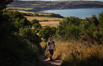 A magical meander - on the coast
