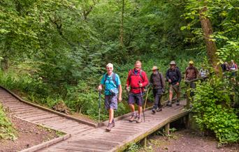 An image of Forge Valley Wood Easy Access Walk