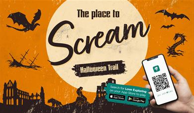 An Image of the Halloween Trail