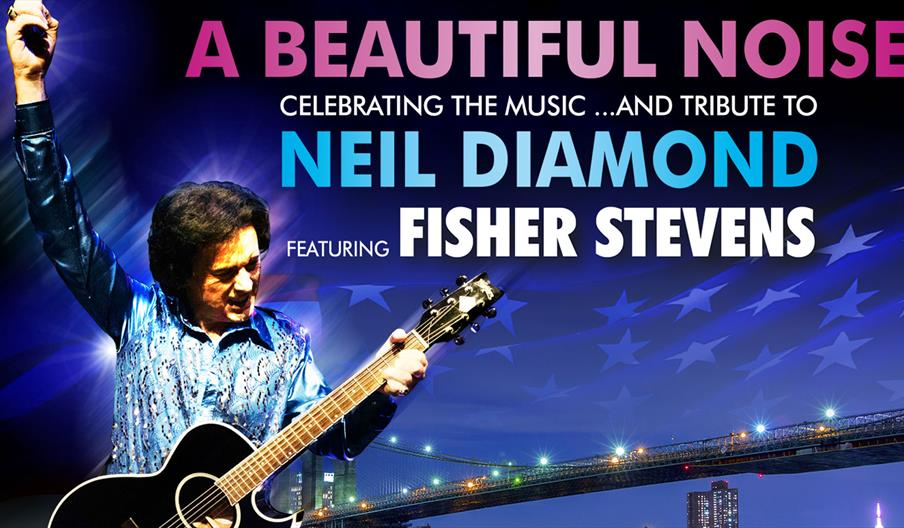 A Beautiful Noise: The Neil Diamond Story