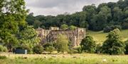 View of Rievaulx Abbey