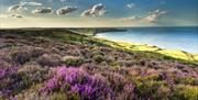 Coast and Forest Circular Cycle Route - Robin Hoods Bay from Ravenscar by Ebor Images