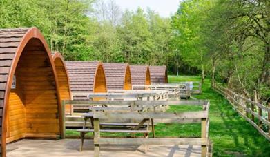 An image of Rosedale Abbey Caravan & Camping