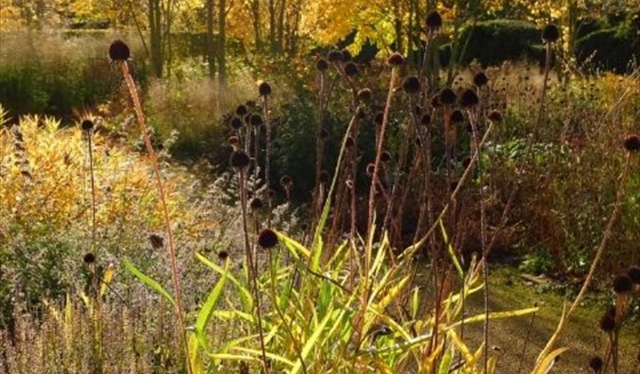 Ryedale Garden Photography