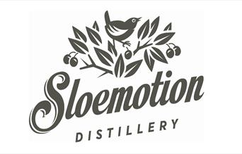 An image of SLOEmotion logo