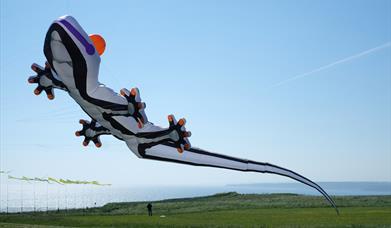 Filey Kite Festival