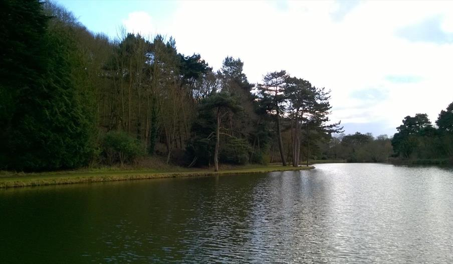 The Mere Trail - Scarborough