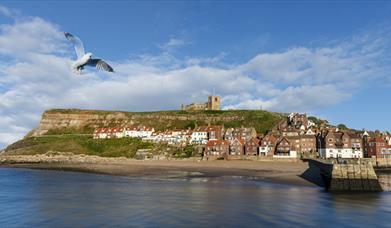 Holidaycottages.co.uk Whitby