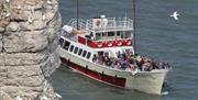 An image of RSPB Seabird Cruises