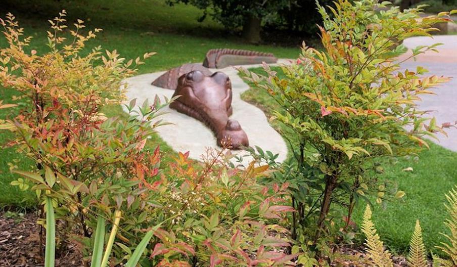 The Jurassic Garden at Pannett Park