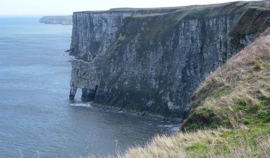 Speeton Cliff Walk