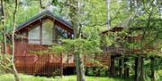 Keldy Cabins - Forest Holidays